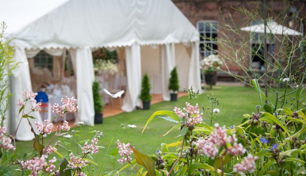external view of the marquee with butterfly in shot